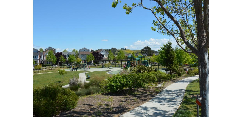 Frogpad Park